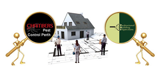 pest control in Perth