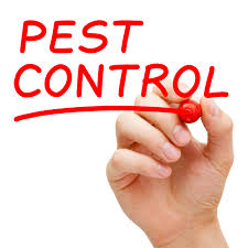 pest-control-images